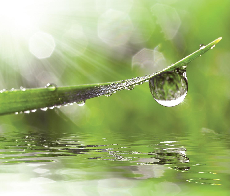 Goutte d'eau sur une feuille