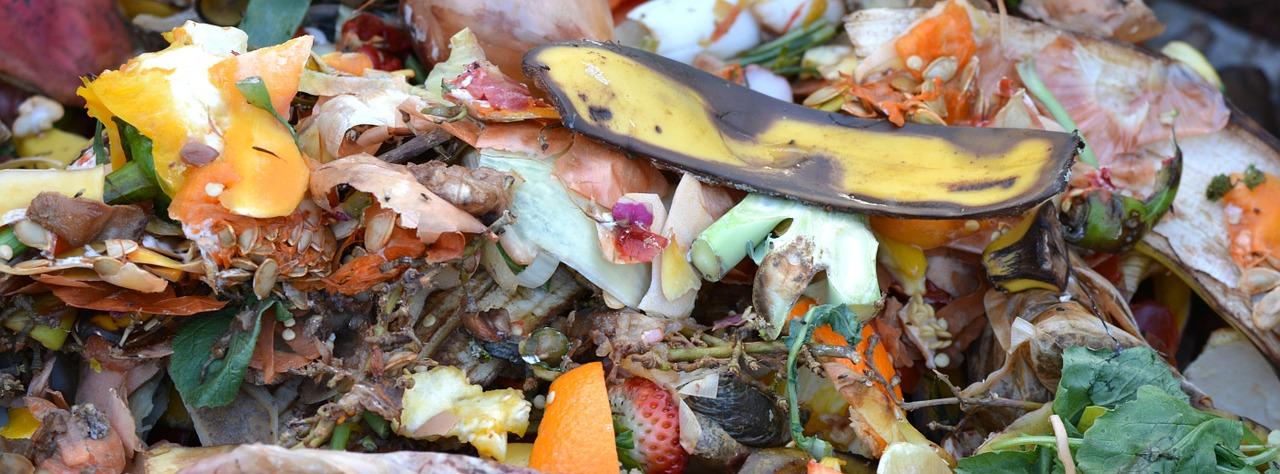 Biodéchets compostables